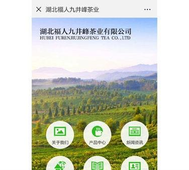 湖北福人九井峰茶业